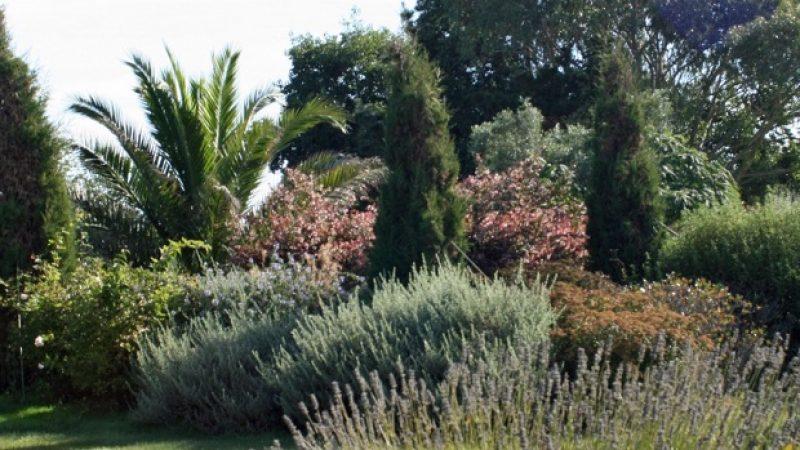 chambres d hotes avec jardin en finistere