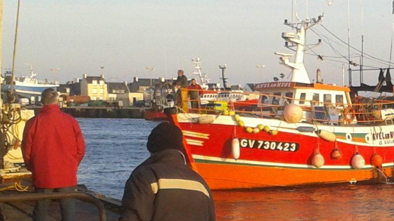 Peche en Bretagne dans le port du guilvinec